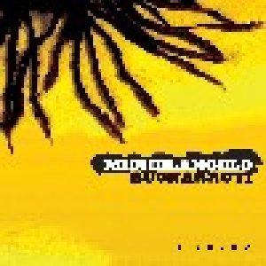 album In sogno - Michelangelo Buonarroti