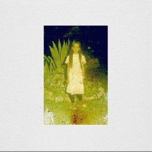 album The Ivy - The Great Saunites