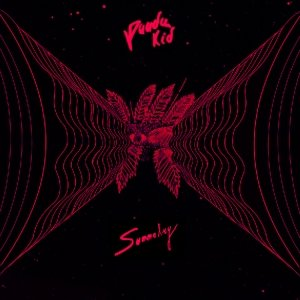 album Summetry - Panda Kid