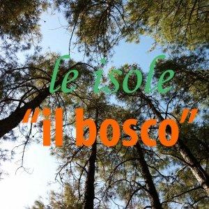 album il bosco - le isole