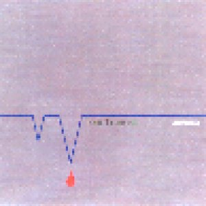album Molecola - Toni Truncali
