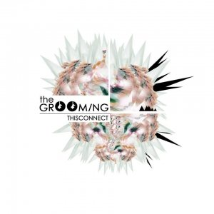 album ThisConnect - The GrOOming