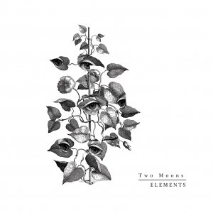 album Elements - Two Moons