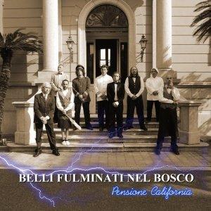 album PENSIONE CALIFORNIA - BELLI FULMINATI NEL BOSCO