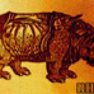 album RHINO - Rhino