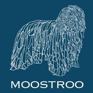 album MOOSTROO - MOOSTROO