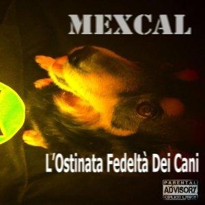album L'Ostinata Fedeltà dei Cani - Mexcal