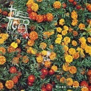 album Twins (Fab Mayday Remix) - Fab Mayday