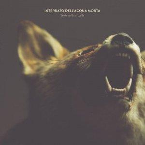 album Interrato dell'Acqua Morta - Stefano Battistella