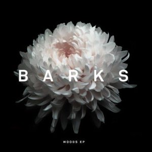 album Woods EP - Barks
