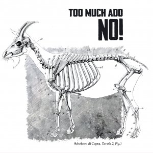 album NO! - Too Much Ado