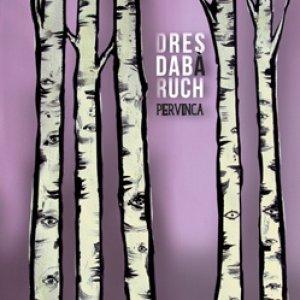 album Pervinca - dresda bàruch