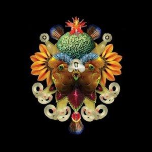 album Sycamore Age #1 Remixes/Reworks - Sycamore Age