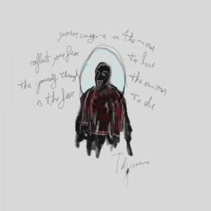 album Mirror - Thysanura