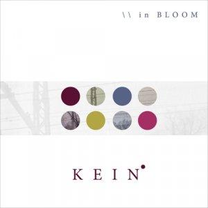 album in BLOOM - kein