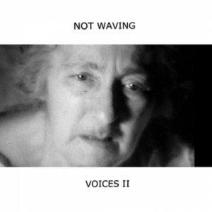 album Voices II - Not Waving