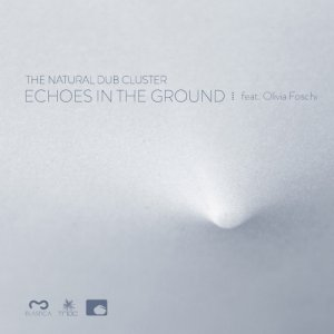 album Echoes in the Ground - The Natural Dub Cluster