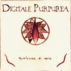 album qualcosa di vero - Digitale Purpurea