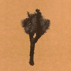 album Yucca - Stereodiva