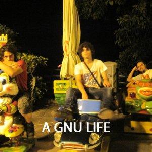 album A Gnu Life - Diodro