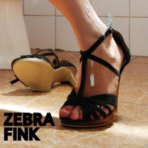 album L'era del porno amatoriale - ZEBRA FINK