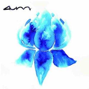 album AUM - Divers On The Moon
