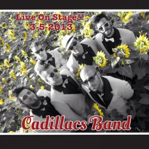 album The Cadillacs Band - Live on Stage - The Cadillacs Band