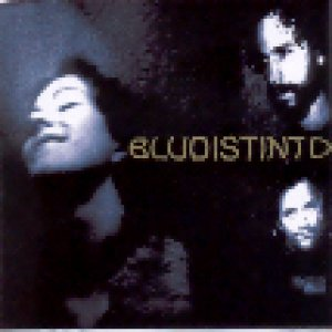 album s/t - Bludistinto