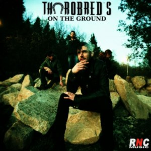 album ON THE GROUND (mastered) - Thorobred's