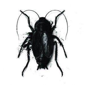 album di Blatta in Blatta - La sindrome della morte improvvisa