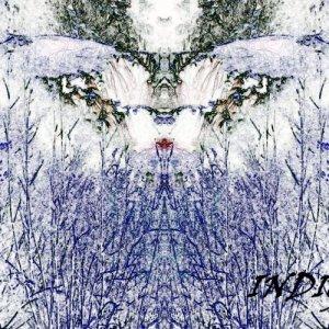 album INDIGO EP - Oh Time Your Pyramids