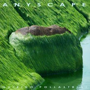 album Anyscape - Quirino Pollastrini
