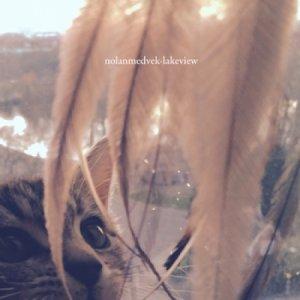 album Lakeview - Nolan Medvek
