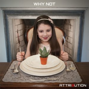 album WHY NOT - Attribution