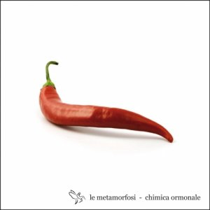 album Chimica Ormonale - Metamorfosi