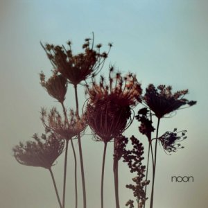 album Noon - NooN band