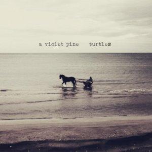 album Turtles - A Violet Pine