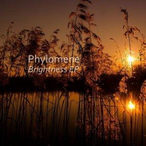 album Brightness - Phylo
