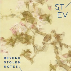 album Beyond Stolen Note - Stèv