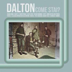 album Dalton -