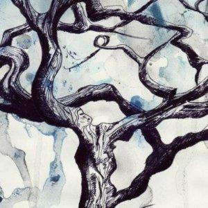 album Anche gli alberi piangono (EP) - Giovanni Zampieri