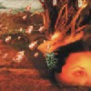 album Extrtemely rare - Ameba