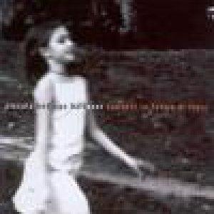 album Canzoni in forma di fiore - Piccola Bottega Baltazar