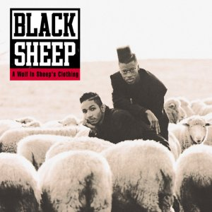 album A Wolf in Sheep's Clothing - BLACK SHEEP