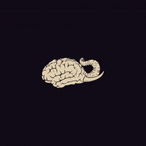 album Elephant Brain - EP - Elephant Brain