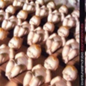 album Vite prefabbricate - Laventunesimafobia