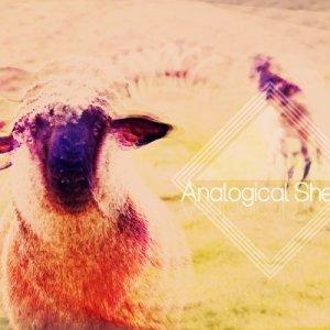 album Analogical Sheep Ep - Analogical Sheep
