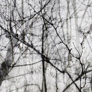 album Dicembre - Marco Catani