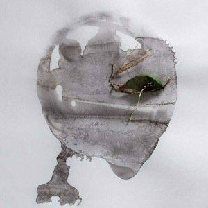 album Rapporti di Forza - Shut Up Munch
