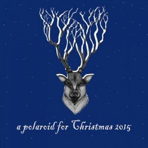 album A Polaroid for Christmas 2015 - Split